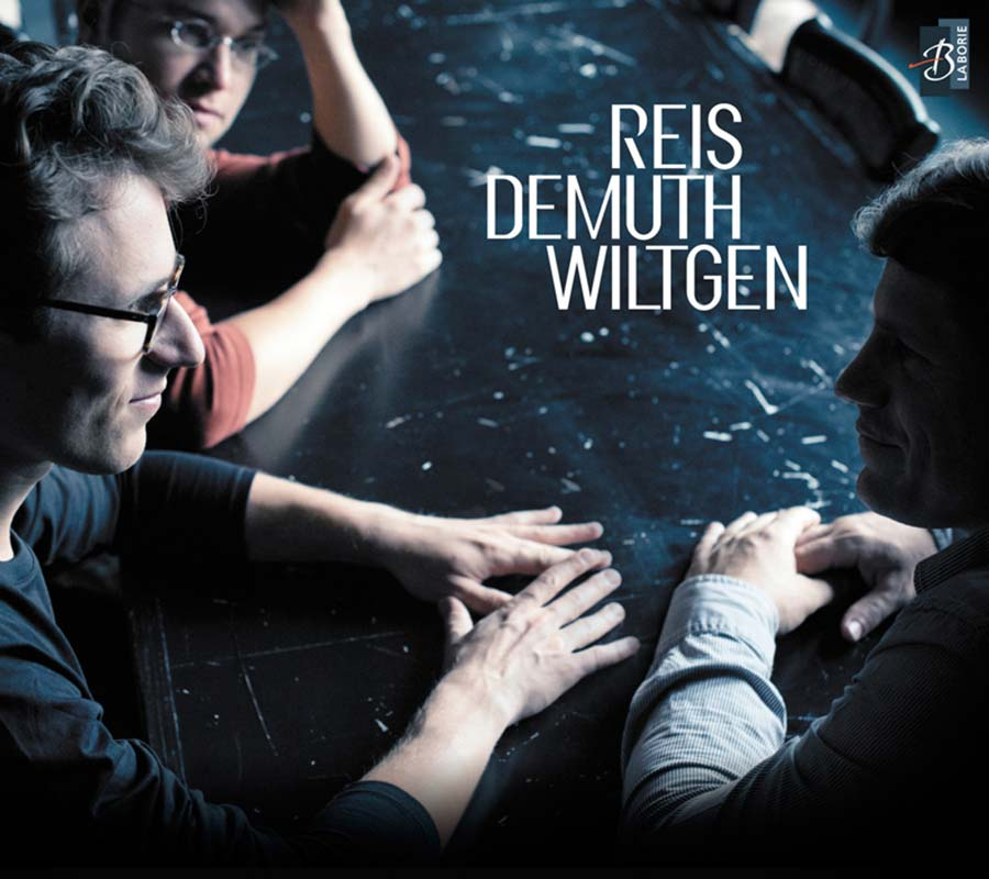 Cover of Reis - Demuth - Wiltgen